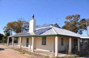 Picture of 128 Hartwig Road, Waikerie SA 5330