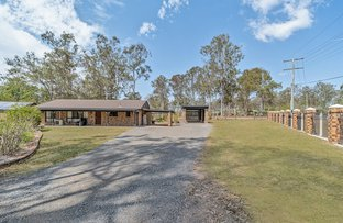 Picture of 2-8 Woodfall Road, Greenbank QLD 4124
