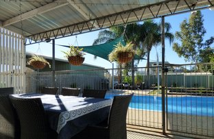 Picture of 49 Ivy Street, Roma QLD 4455