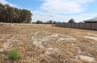 Picture of 108 Teddy's Lane, Barham NSW 2732