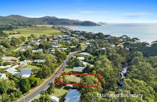 Picture of 17 Kenelm Avenue, Sisters Beach TAS 7321