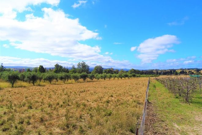 Picture of 6 St Fillans Road, MUDGEE NSW 2850