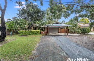 Picture of 111 Webster Road, Deception Bay QLD 4508