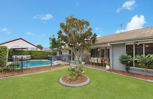 Picture of 11 Coney Court, Mountain Creek QLD 4557