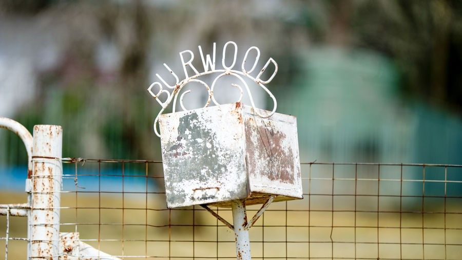 'BURWOOD' 343 Rossmar Park rd, Caroona NSW 2343, Caroona NSW 2343, Image 1