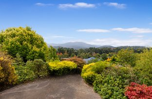 Picture of 1 Montpellier Street, Healesville VIC 3777