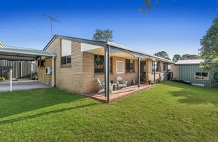 Picture of 8 Mingoola Street, Murarrie QLD 4172