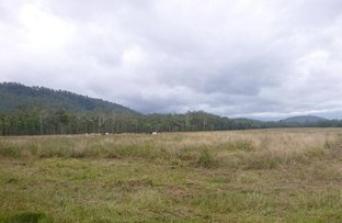 Picture of 1 George Creek Road, Long Pocket QLD 4850