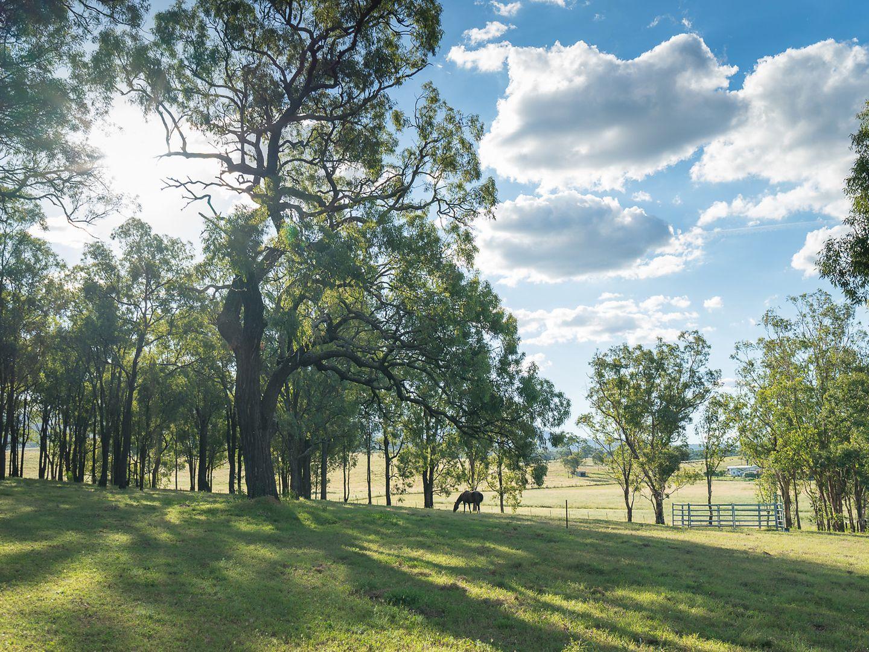 473 Upper Dartbrook Road, Scone NSW 2337, Image 2