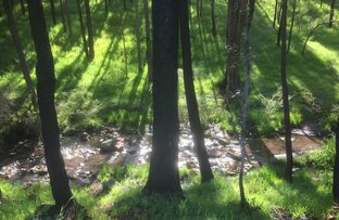 Picture of Lot 15 Logue Brook Dam Road, Cookernup WA 6220