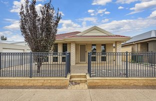 Picture of 177 Newton Boulevard, Munno Para West SA 5115