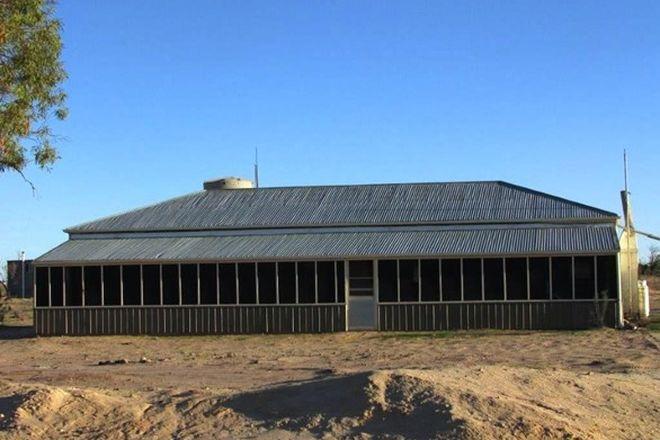 Picture of * Whyjonta Station, TIBOOBURRA NSW 2880