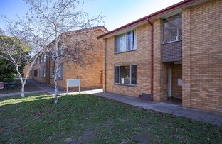 Picture of 1/47 Brigalow Street, O'Connor ACT 2602