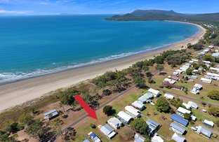 Picture of 55 Acacia Avenue, Seaforth QLD 4741
