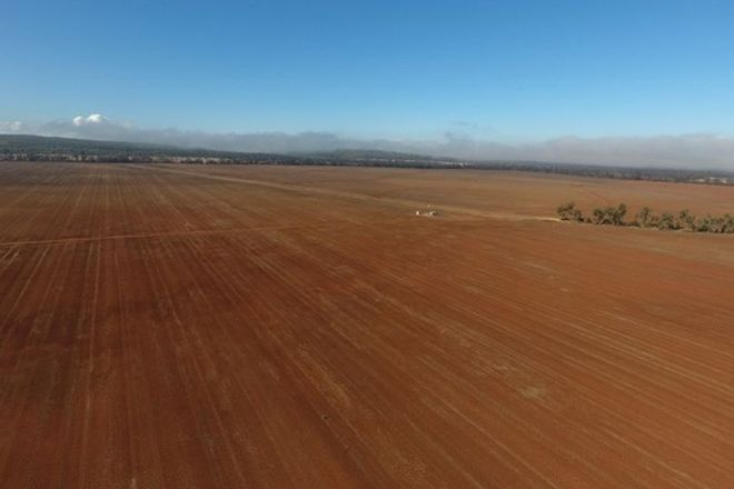 Picture of Part Billandrie, PALLAMALLAWA NSW 2399