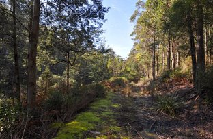 Picture of 252 Saddle Road, Kettering TAS 7155