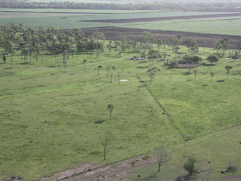 1217 Groper Creek Road, Inkerman QLD 4806, Image 1