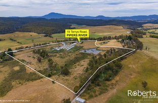 Picture of 19 Terrys Road, Pipers River TAS 7252