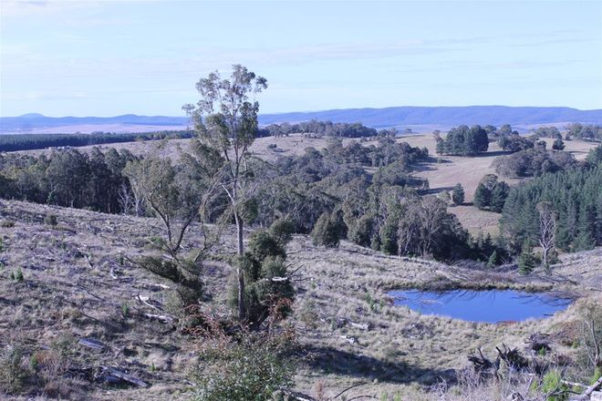 Picture of Lot 38 South Forest Way Kindervale, BRAIDWOOD NSW 2622