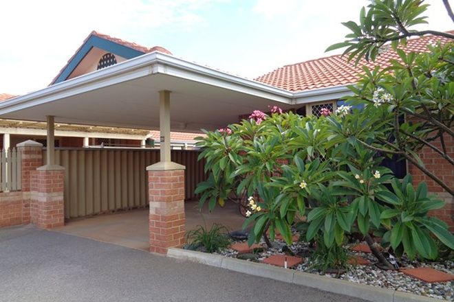Picture of 28/20 Francis Street, GERALDTON WA 6530