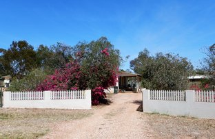 Picture of 7 Red Admiral Place, Lightning Ridge NSW 2834