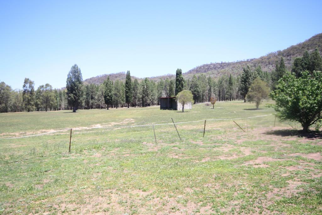 800 Worondi Creek Road, Gungal NSW 2333, Image 2