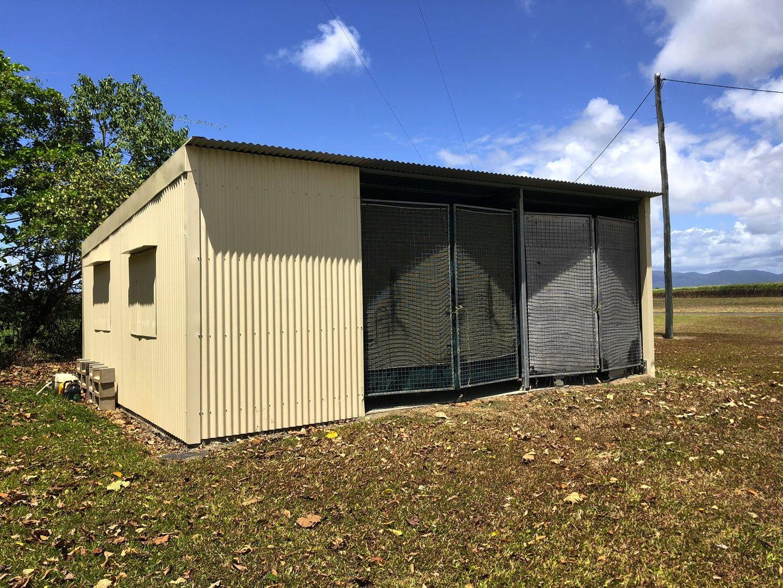 98 Jodrell Rd, Rockingham QLD 4854, Image 2