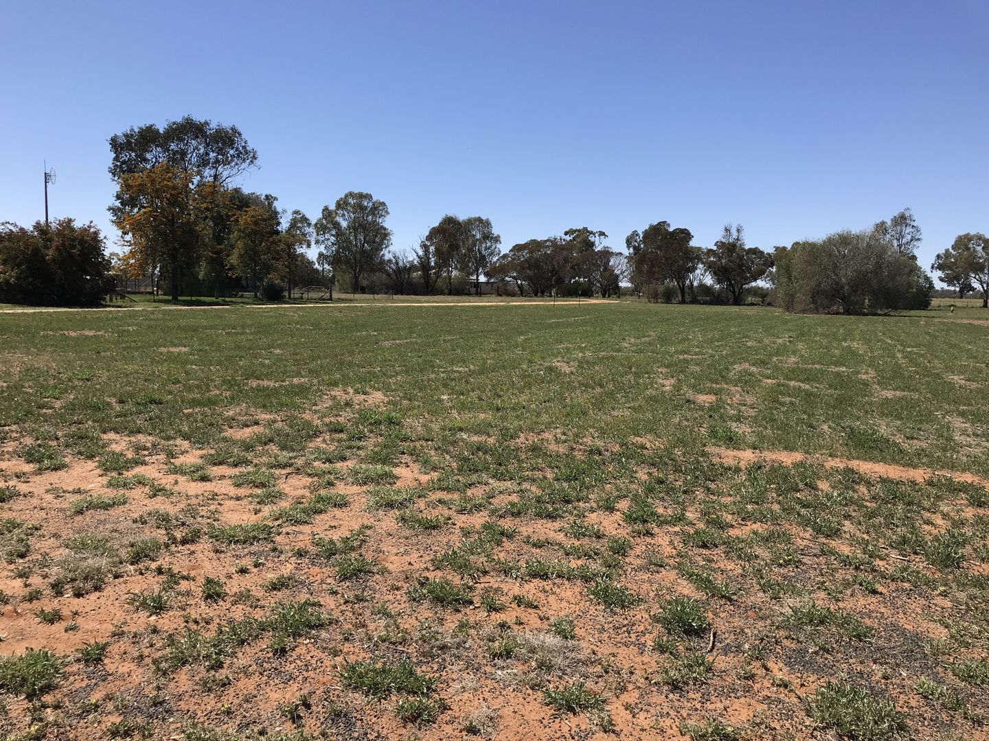 Lot 3 and 12 National Park Road, Curban NSW 2827, Image 1