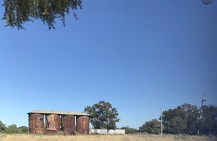 Picture of 121 Myrtle Street, Gilgandra NSW 2827