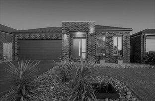 16 Black Gum Crescent, Cranbourne West VIC 3977