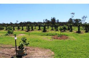 32 Greenswamp East Road, Morton Vale QLD 4343