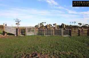 Picture of 590 Boundary Drain Road, Koo Wee Rup VIC 3981