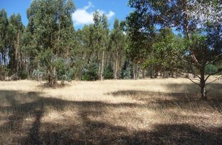 Picture of Lot 223 Henderson Rd, Bridgetown WA 6255