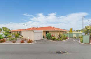 Picture of 29/8 Court Street, West Busselton WA 6280