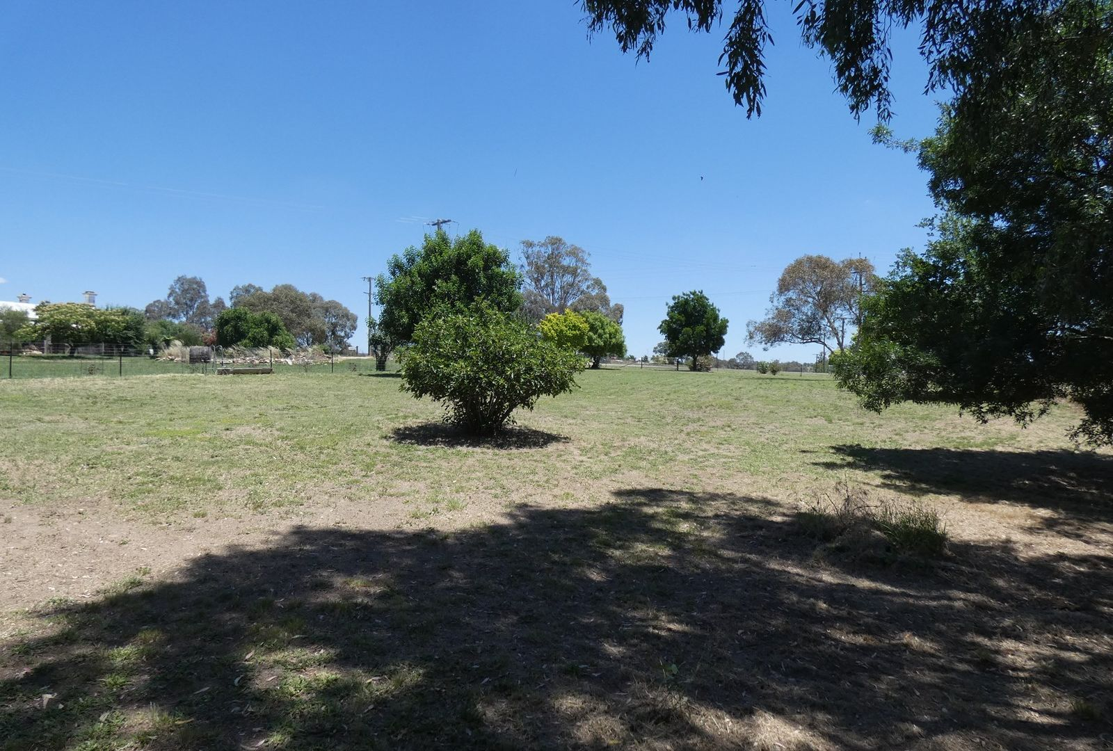 2246 Murringo Road, Murringo NSW 2586, Image 1