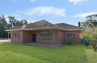 Picture of 1519 Two Wells Road, Ward Belt SA 5118