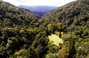 Picture of 497 Mount Warning Road, Mount Warning NSW 2484