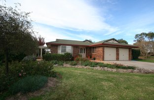 371 Old Ballandean Road, Tenterfield NSW 2372