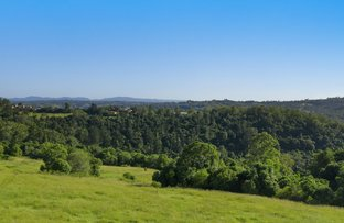 Picture of 245 Wyrallah Road, Monaltrie NSW 2480