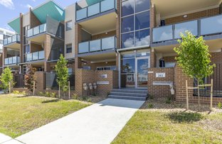 Picture of 26/283 Flemington Road, Franklin ACT 2913