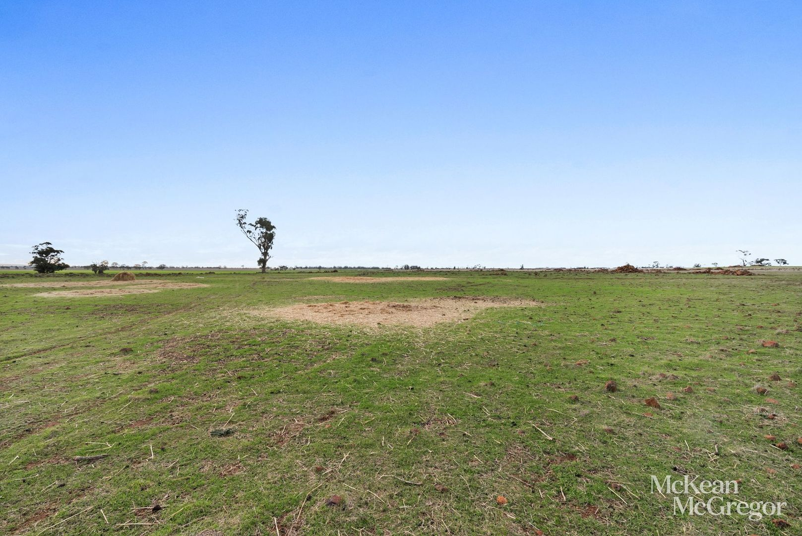 Lot 2 Bendigo-St Arnaud Road, Newbridge VIC 3551, Image 2