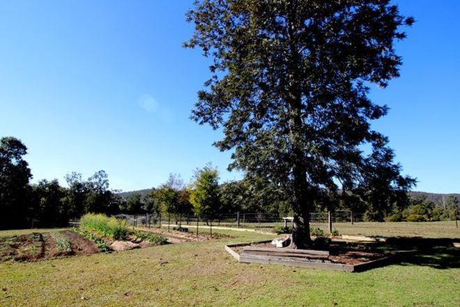 Picture of 438 Upper Rollands Plains Rd, ROLLANDS PLAINS NSW 2441
