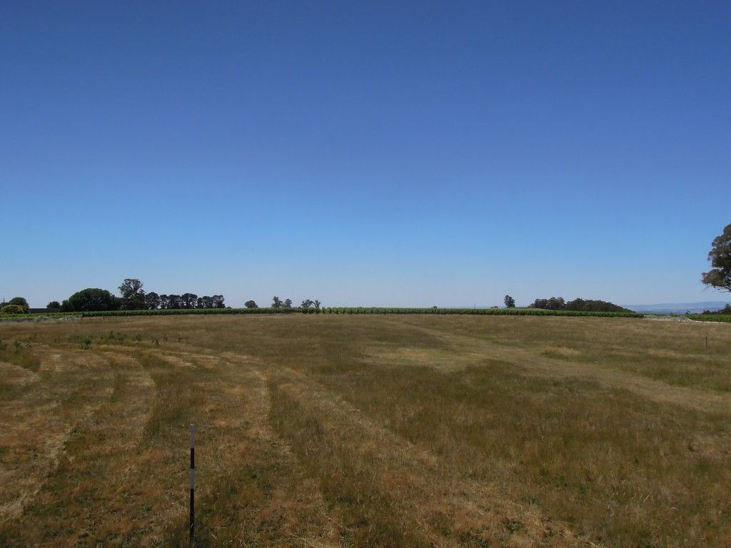 4830 Mansfield Whitfield Road, Whitlands VIC 3678, Image 1