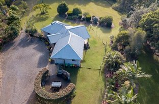 Picture of 913 Scotts Head Rd, Scotts Head NSW 2447