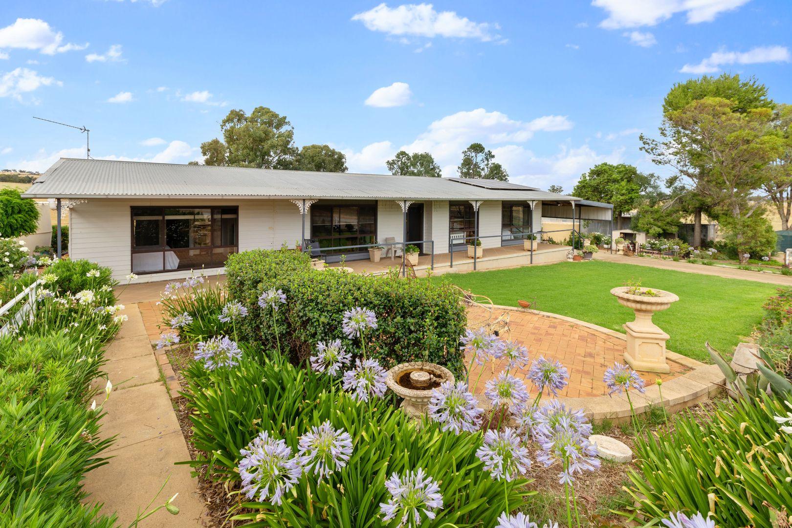 135 Eleven Mile Lane, Yarragundry via, Wagga Wagga NSW 2650, Image 1