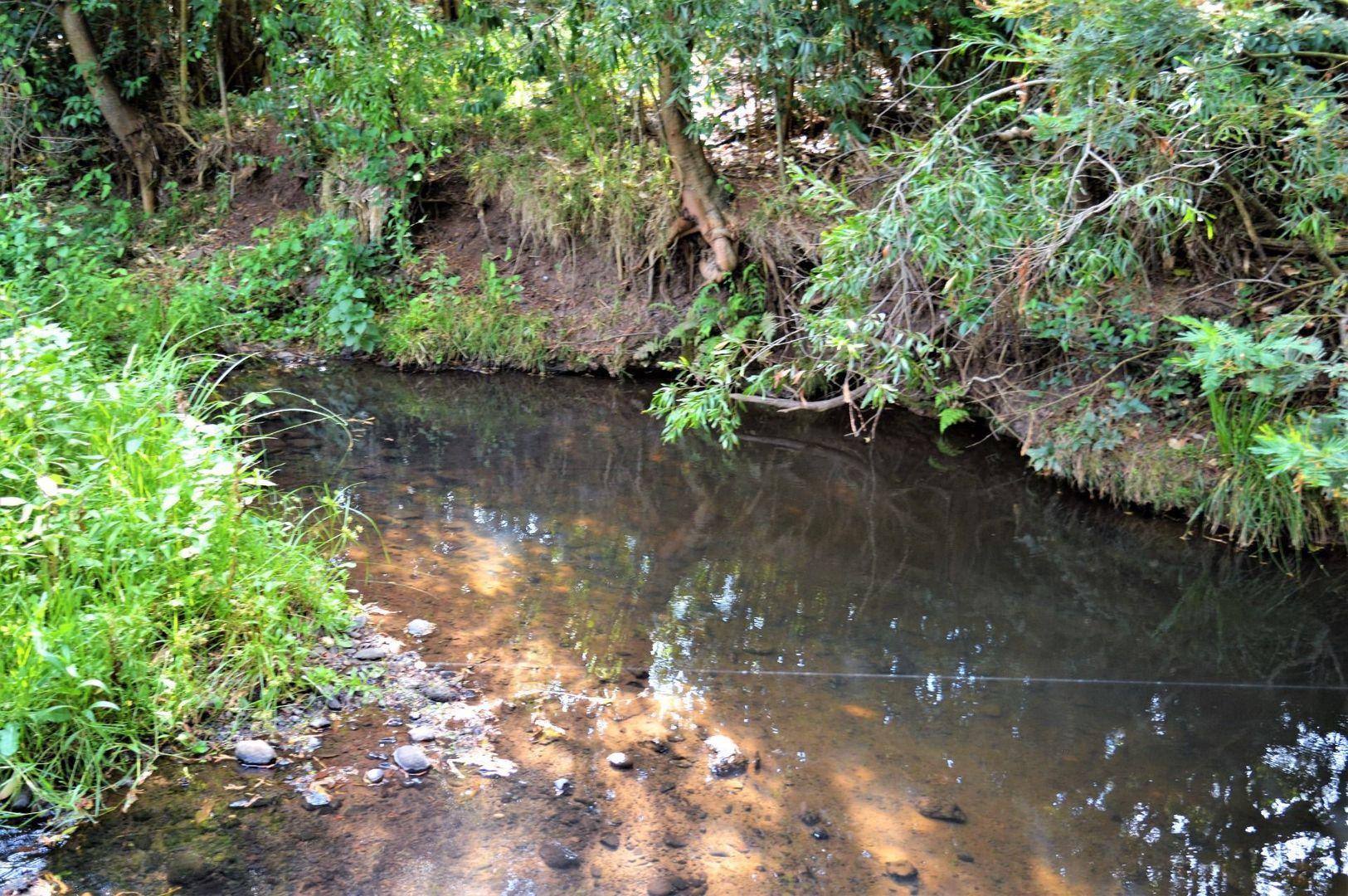Lot 2 Acacia Plateau Road, Acacia Creek NSW 2476, Image 2
