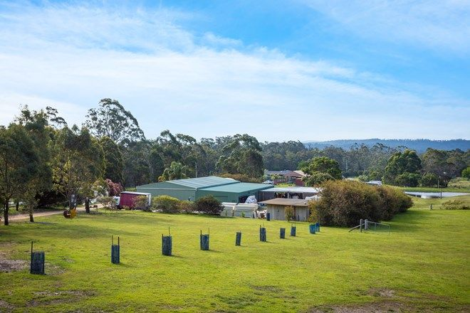 Picture of 1834 SAPPHIRE COAST DRIVE, WALLAGOOT NSW 2550