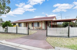 Picture of 57 Forest Avenue, Newton SA 5074