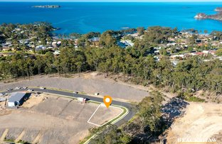 Picture of 65 Freycinet Drive, Sunshine Bay NSW 2536