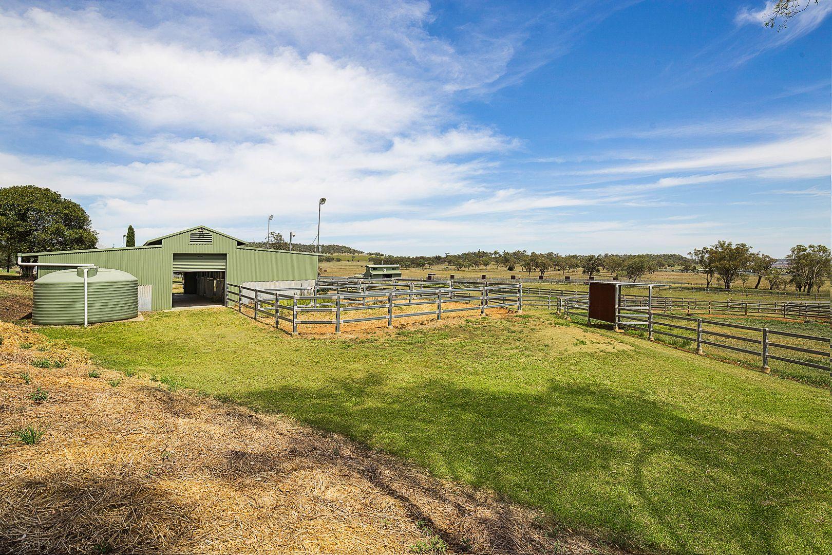 462 Bridies Road, Greenmount QLD 4359, Image 2